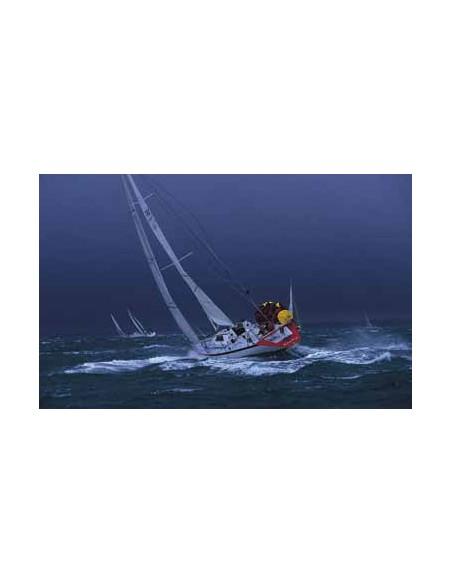 Rescue Buoy wit