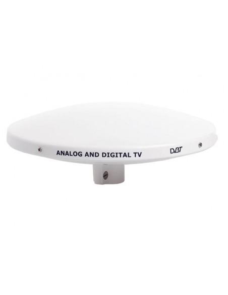 TV antennes